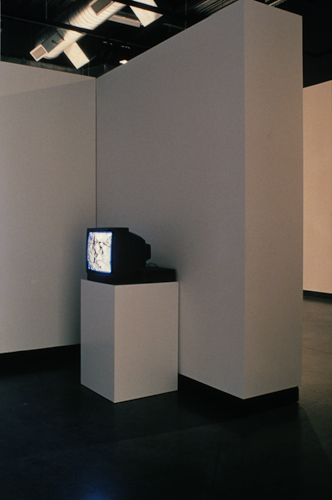 Wake exhibition (Dupont I Gallery - video), Delaware Center for Contemporary Art